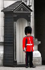 Buckingham Palace Foot Guard